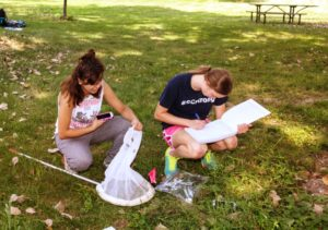 Students conduct insect research in Red Barn Park on the Truman campus