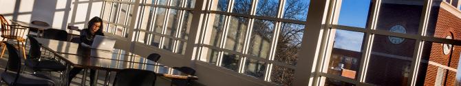 BANNER Library3rdFloorNClockTowerJan2014 (4 of 4)