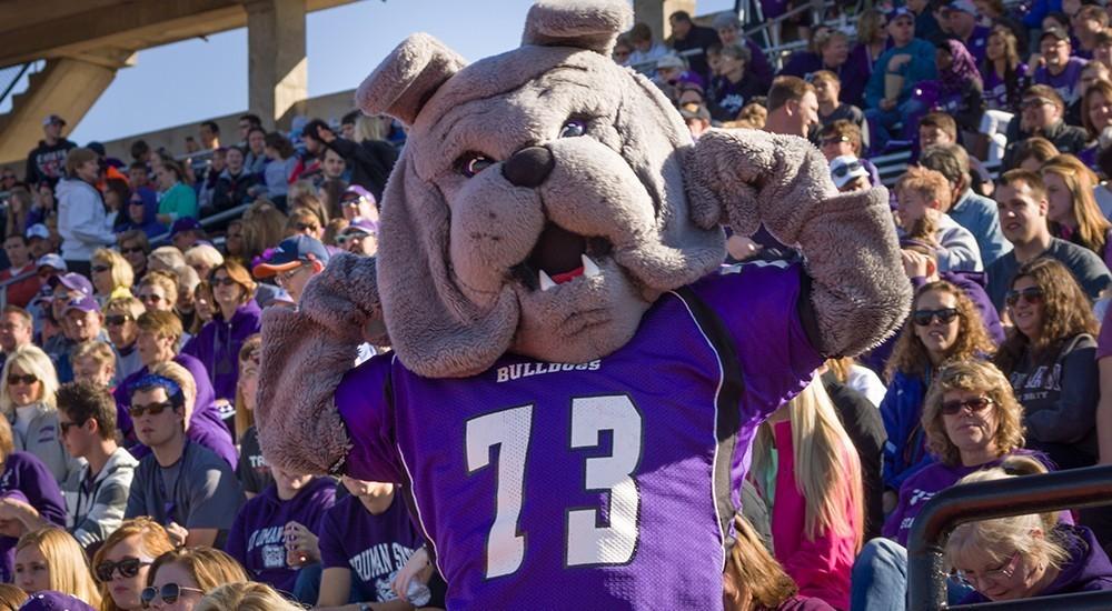 Spike - Bulldog mascot