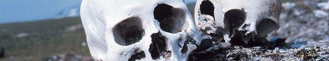 punuk alaska skulls