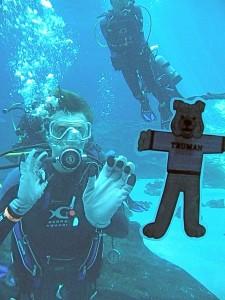 Flat Spike scuba diving
