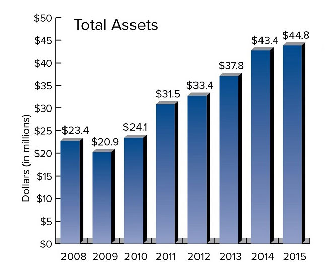 Total Assets for Truman State University Foundation