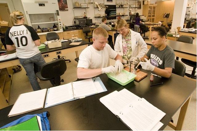 School of Science & Mathematics Images