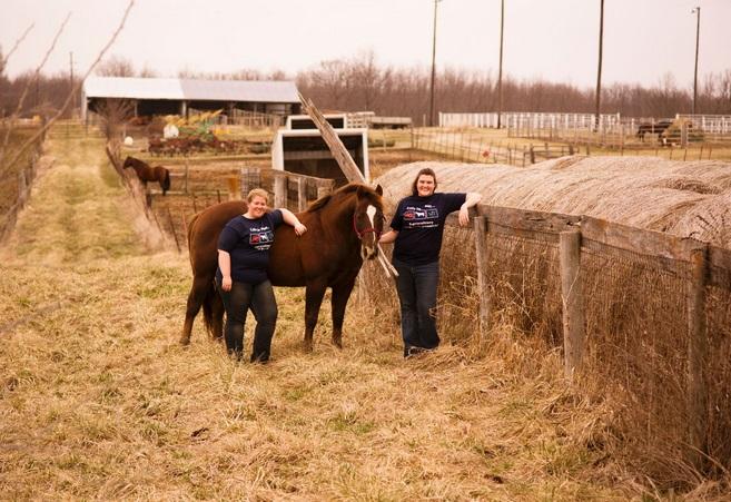 University Farm Equine Program