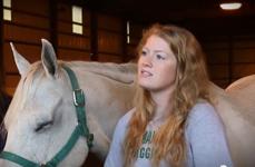 Josie Foley - Horse Research