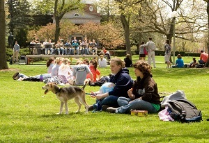 The large park-like area on the Truman campus known as the Quad provides the perfect place to gather with friends, play Frisbee, or just relax.
