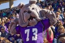 Spike- Bulldog Mascot
