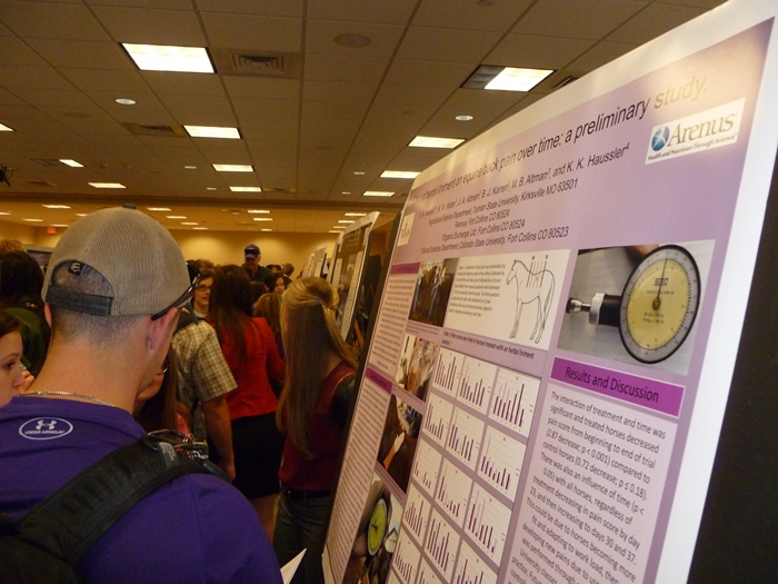 Poster Sessions at the Student Research Conference