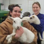 Livestock Management Class