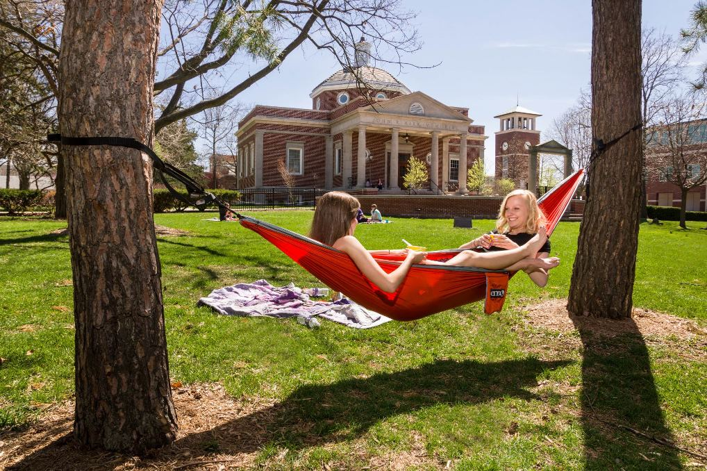 Find the perfect trees for a hammock on the Quad