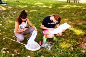Student conducting insect research