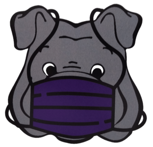 Bulldog Mascot with Facial Covering